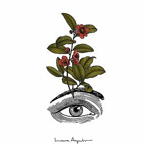 Eye in bloom