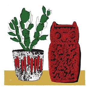 Plant and Owl